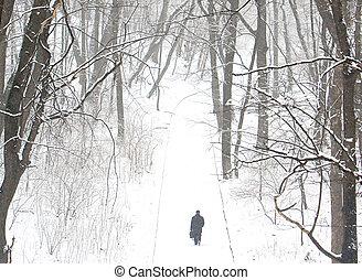 парк, гулять пешком