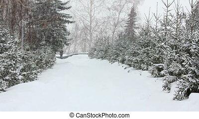 парк, зима, снегопад