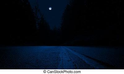 перемещение, лес, ночь, через, через, дорога