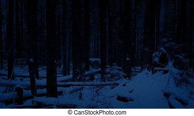 перемещение, через, лес, снегопад, ночь