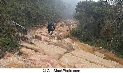 пеший туризм, назад, travel., земля, движение, медленный, рюкзак, молодой, собирается, влажный, турист, плащ, след, бег, прыжки, в течение, задний, человек, камень, скалистый, forest., бег трусцой, джунгли, парень, мужской, path., посмотреть