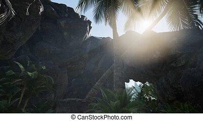 пещера, солнечный луч, palms