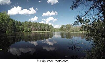 поверхность, лес, под, озеро, небо, синий, стекловидный