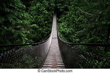 подвеска, мост