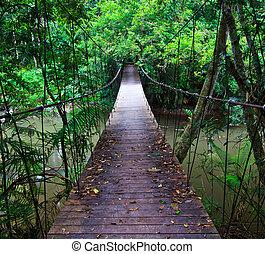 подвеска, мост, через, , воды, в, , лес