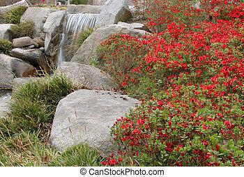 подробно, сад, японский