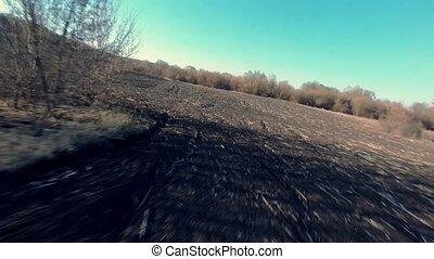 поле, рано, plowed, trees, весна