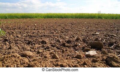 поле, plowed, поле, изнасилование, весна