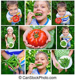 помидор, мальчик, держа
