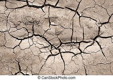 почва, parched