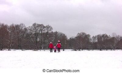 пруд, немного, девушка, зима, семья