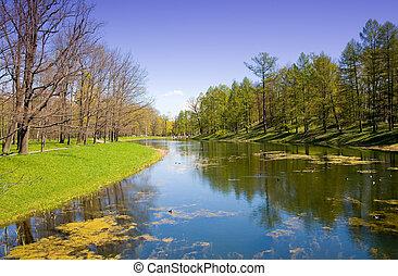 пруд, парк