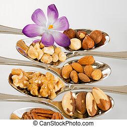 пурпурный, цветок, and, многие, другой, виды, of, орешки, для, питание
