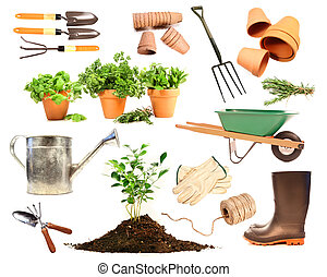 разнообразие, of, objects, для, весна, насаждение, на, белый