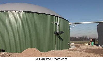 растение, biogas