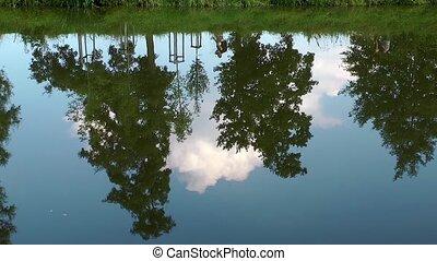 река, дерево, отражение