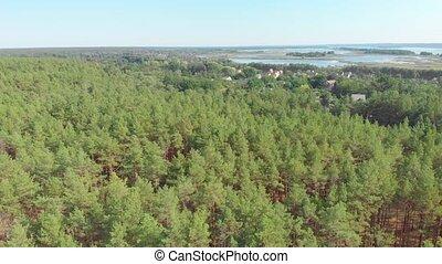 река, лес, houses