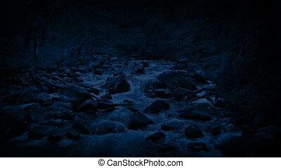 река, через, лес, ночь