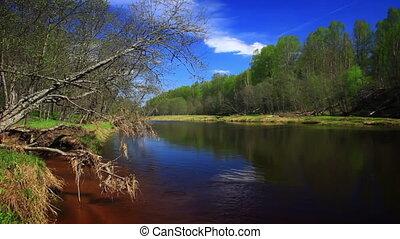 река, hd., спокойный, лес