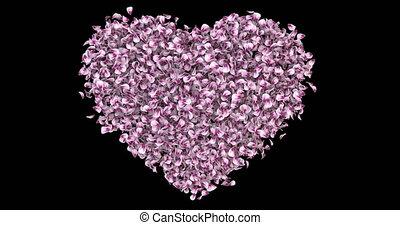 розовый, сердце, цветок, романтический, роза, форма, petals, штейн, sakura, альфа, петля, 4k