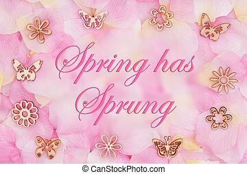 розовый, цветок, весна, захмелевший, petals, роза, сообщение, has
