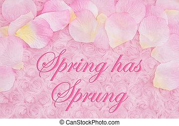 розовый, цветок, ткань, весна, petals, роза, сообщение, has, бледный, плюш