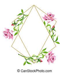 розовый, square., flower., роза, set., орнамент, иллюстрация, акварель, кристалл, задний план, граница, рамка, ботанический