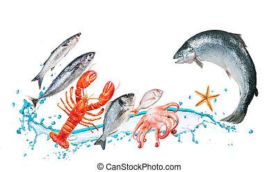 рыба, прыгать, with, watersplash