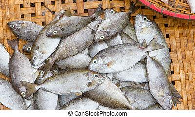 свежий, рыба, морепродукты