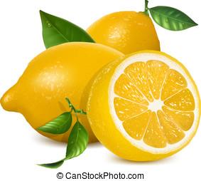 свежий, lemons, with, leaves