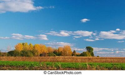 сельская местность, панорамирование, пейзаж