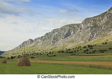 сельский, пейзаж, mountaineous