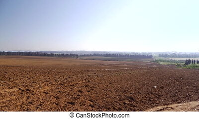 сельское хозяйство, поле
