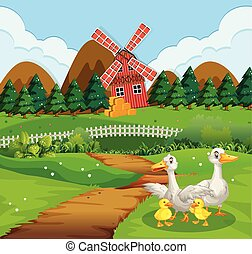 сельхозугодий, семья, утка