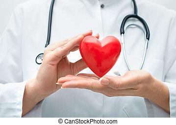 сердце, держа, врач