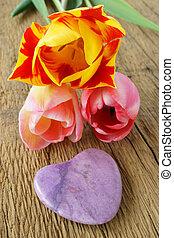 сердце, камень, пурпурный, tulips, три, один