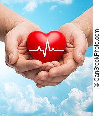 сердце, кардиограмма, вверх, держа, руки, закрыть