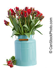 синий, весна, цветы, тюльпан
