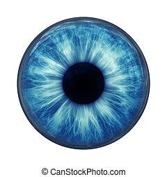 синий, глаз