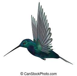 синий, зеленый, колибри