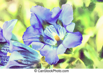 синий, цветок, весна, gentiana, иллюстрация, акварель, труба