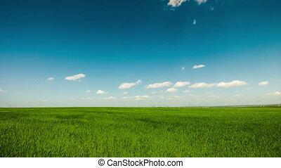 синий, gree, clouds, задний план