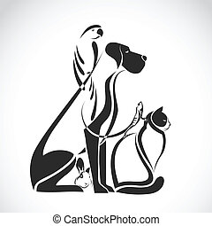 собака, группа, кот, рептилия, -, птица, isolated, вектор, pets, кролик