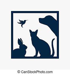 собака, группа, pets, кот, рамка, -, птица, isolated, вектор, задний план, белый, кролик