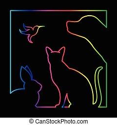 собака, группа, pets, кот, рамка, -, птица, isolated, вектор, черный, задний план, кролик