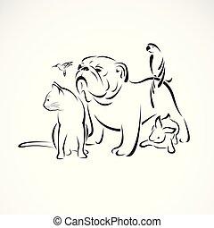 собака, или, группа, pets, домашнее животное, ара, -, птица, background., isolated, вектор, кролик, значок, логотип, белый, design., ваш, кот