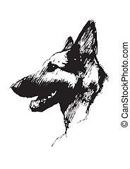 собака, poste, эльзасский