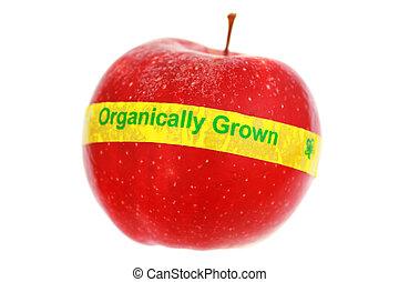 созревший, красный, органический, яблоко, isolated, на, white., мелкий, dof, фокус, на, органический, label.