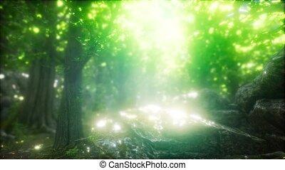 солнце, лес, туманный, весна, утро, rays