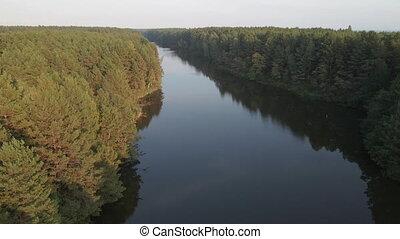 сосна, view., река, forest., антенна